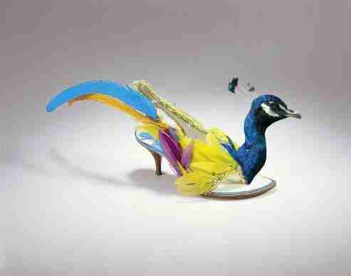 Birdie Shoes