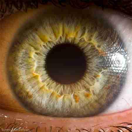 Το ανθρώπινο μάτι από πολύ κοντά