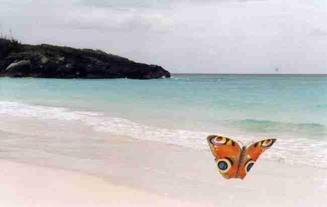 Οι πιο εντυπωσιακές παραλίες στον κόσμο