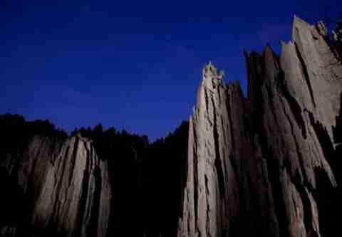 Το πέτρινο δάσος της Μαδαγασκάρης
