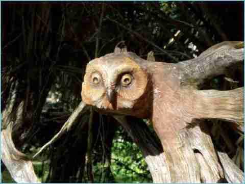 Απίθανο γλυπτό από ξύλο του Paul Baliker