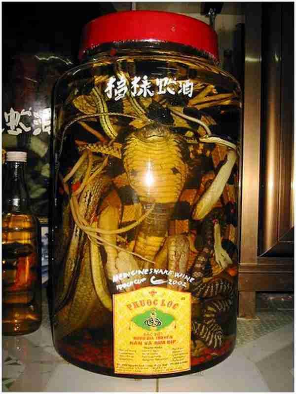 Παραδοσιακό κρασί με φίδια