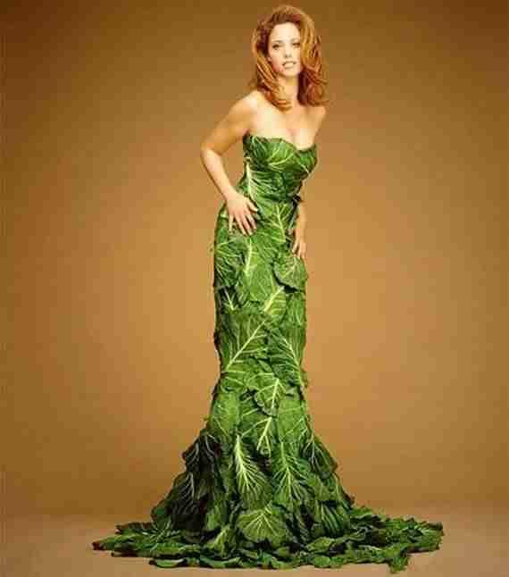 Φόρεμα από λάχανα