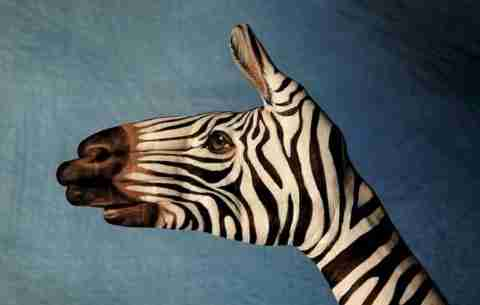 Guido Daniele, ο καλλιτέχνης των χεριών