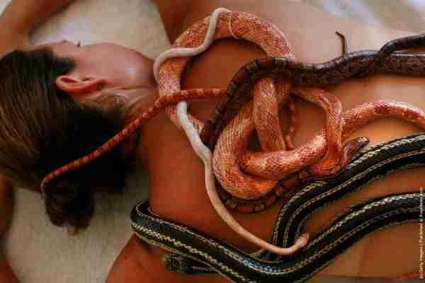 Εσείς θα κάνατε μασάζ με φίδια;