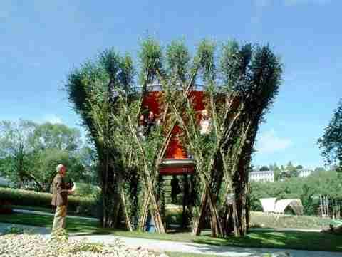 Η τέχνη του Tree Shaping