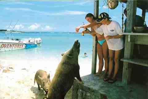 Διακοπές στις Μπαχάμες..