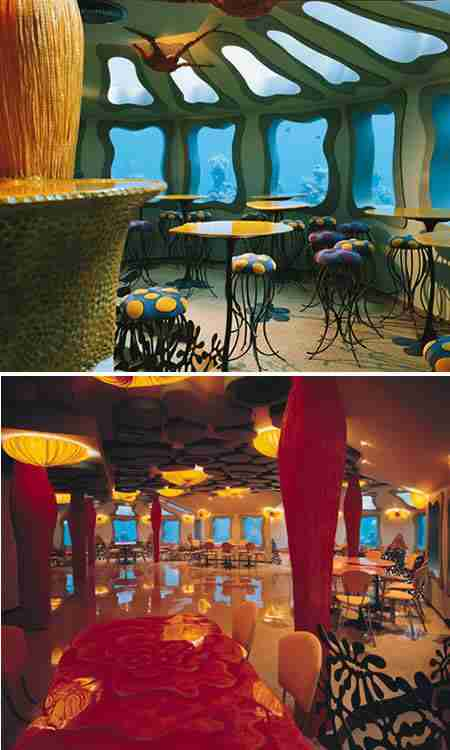 Red Sea Star Bar