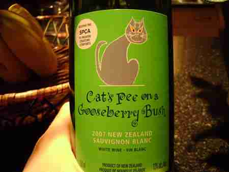 Cat's Pee on a Gooseberry Bush