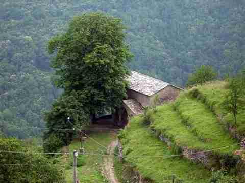 Το χωριό των μαγισσών