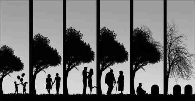 Ο κύκλος της ζωής..