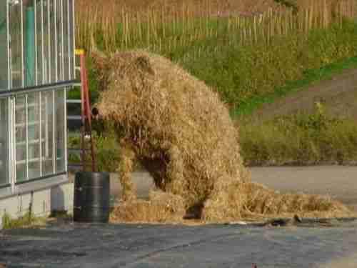 Όταν βαριούνται οι αγρότες..