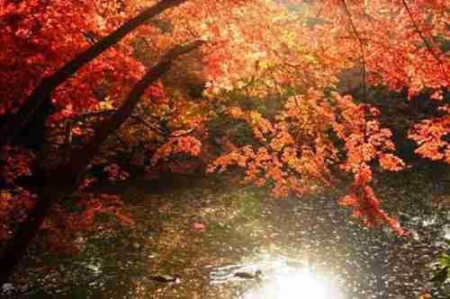 Rikugien Garden, Ιαπωνία