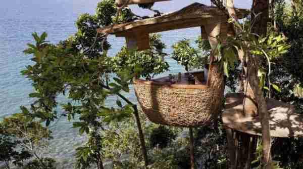 Ένα εστιατόριο πάνω σε δέντρο!