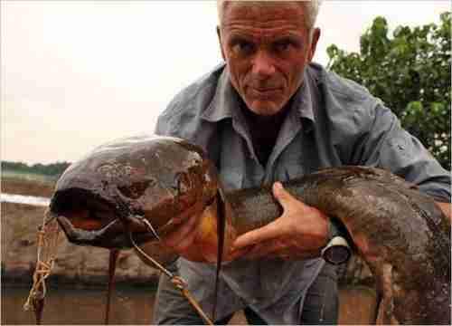 Τα τρομακτικότερα ψάρια δολοφόνοι