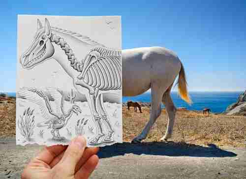 Ζωγραφική vs Φωτογραφία (2)