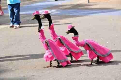 Η πιο πρωτότυπη παρέλαση