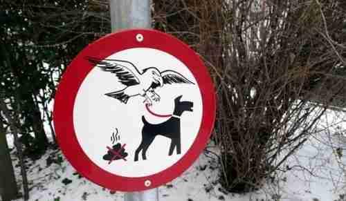 Παράξενες πινακίδες από όλο τον κόσμο