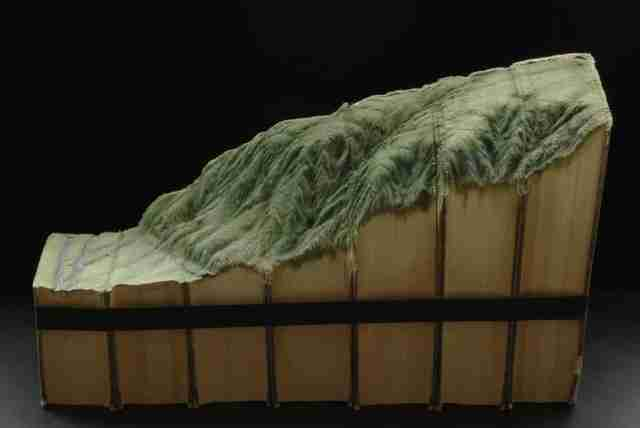 Γλυπτά από βιβλία, του Guy Laramee