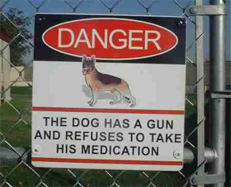 15 απίθανες προειδοποιητικές πινακίδες για σκύλους