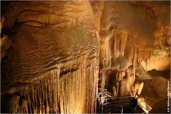 Εθνικός Δρυμός του σπηλαίου Μαμούθ, Κεντάκι, ΗΠΑ