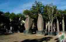 Το παράξενο δέντρο Toborochi