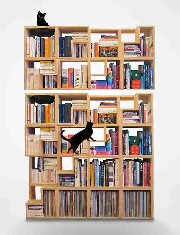 The Cat-Library