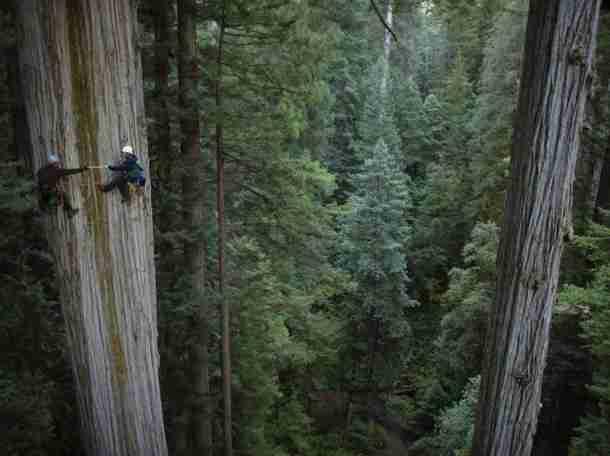 30 φωτογραφίες με ανθρώπους που δεν τους τρομάζει το ύψος