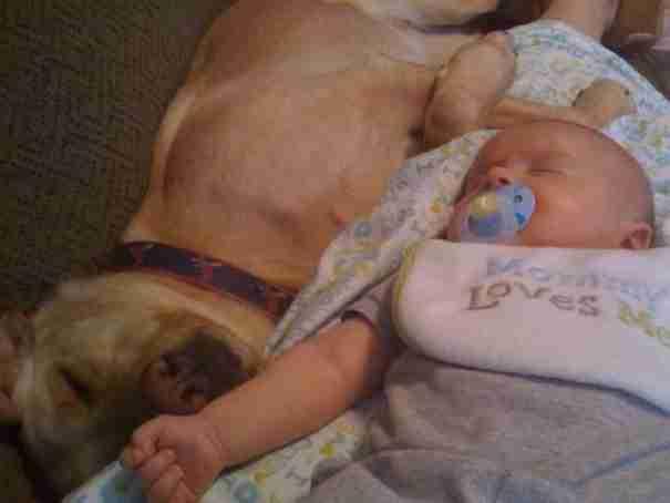 Αγόρι και σκύλος μεγαλώνουν μαζί!