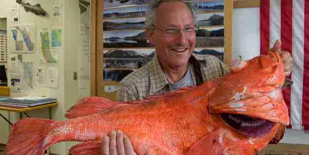 Ψάρι μαθουσάλας υπερβαίνει την ηλικία των 200 ετών!
