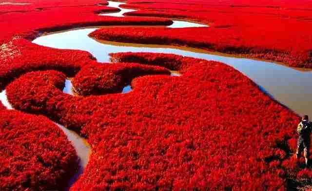 Οι 10 πιο παράξενες παραλίες στον κόσμο