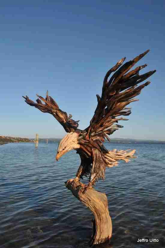 dinfo.gr - Εκπληκτικά γλυπτά από ξύλα που ξέβρασε η θάλασσα