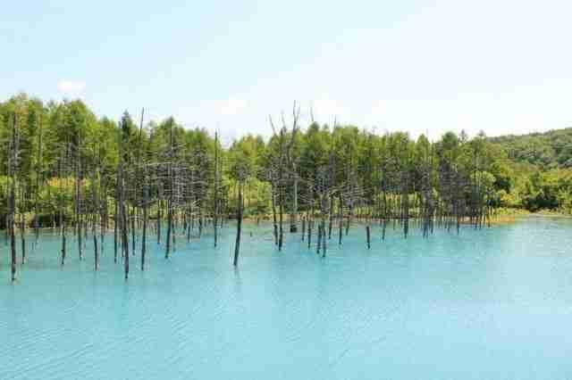 dinfo.gr - Η λίμνη που αλλάζει χρώματα