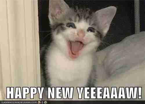 dinfo.gr - 35 αστείες φωτογραφίες για.. Καλή Χρονιά!