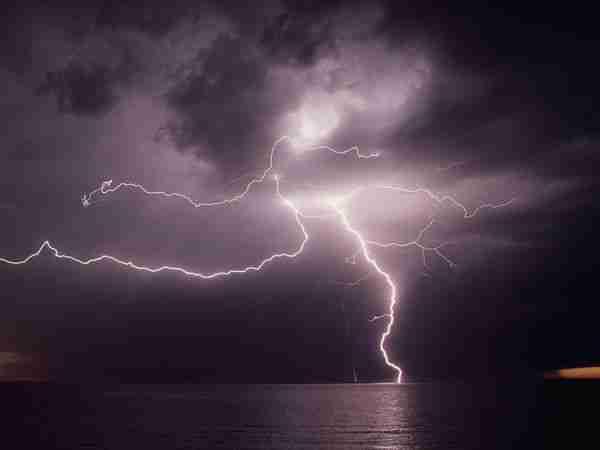 dinfo.gr - Όσοι πιστεύετε ότι τα πάντα στη φύση είναι τυχαία, διαβάστε αυτό το άρθρο..