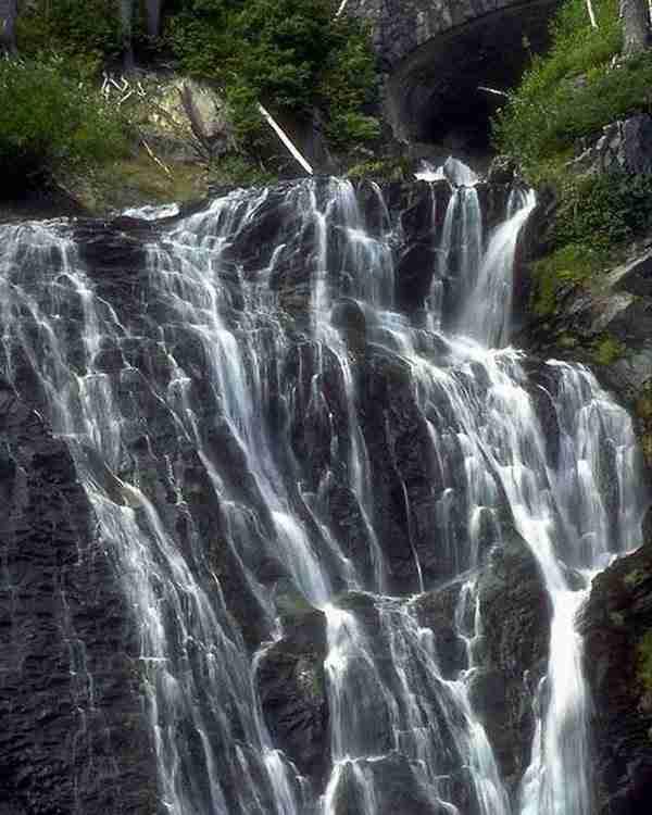 diaforetiko.gr : 282 Όσοι πιστεύετε ότι τα πάντα στη φύση είναι τυχαία, διαβάστε αυτό το άρθρο...