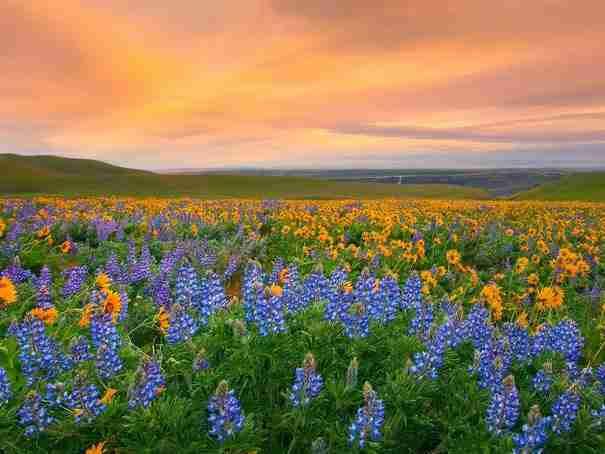 Τα 22 πιο απίστευτα φυσικά πολύχρωμα μέρη στη Γη