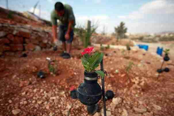 Μια ηλικιωμένη από την Παλαιστίνη μαζεύει τις Ισραηλινές χειροβομβίδες και φυτεύει μέσα τους λουλούδια!