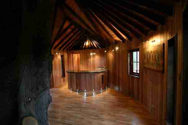 dinfo.gr - Μια οικογένεια ζει σε ένα δεντρόσπιτο. Ακούγεται ενδιαφέρον; Περιμένετε μέχρι να δείτε και το εσωτερικό του!