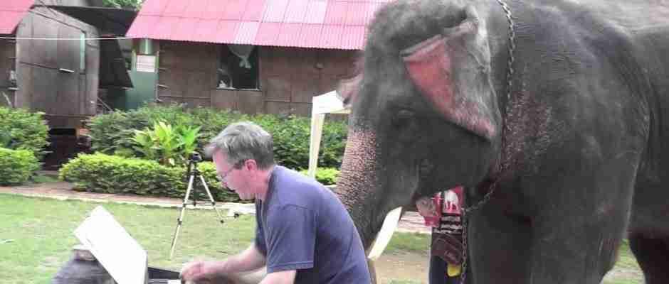 dinfo.gr - Ποιος θα μπορούσε να φανταστεί ότι μπορεί ένας ελέφαντας να το κάνει αυτό..