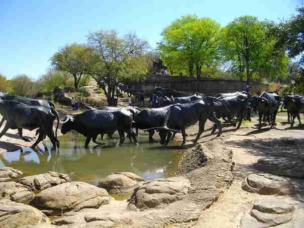 «Cattle Drive» , Ντάλλας, Τέξας, ΗΠΑ
