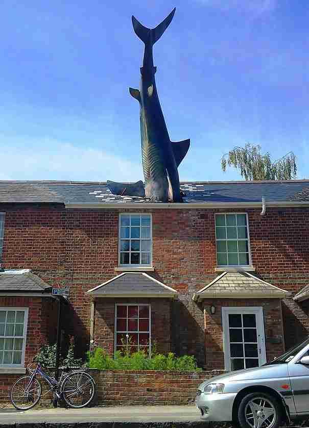 «Ο καρχαρίας» , Οξφόρδη, UK
