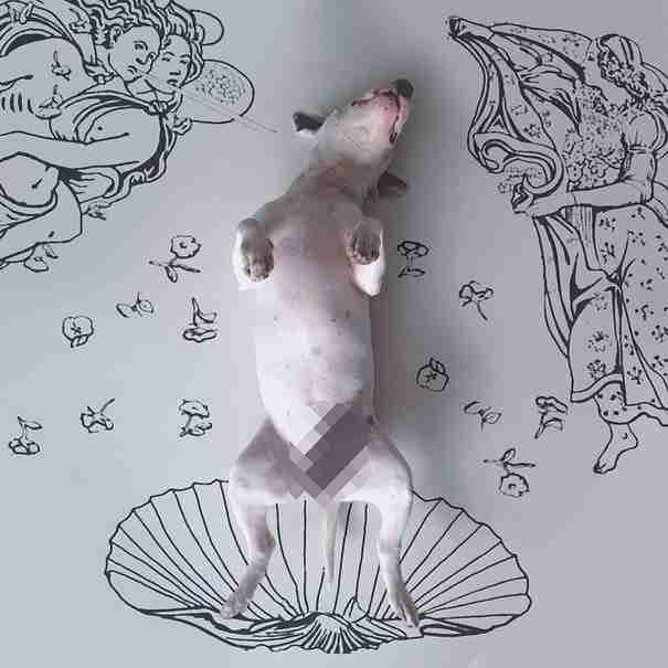 Καλλιτέχνης δημιουργεί διασκεδαστικές εικονογραφίες με πρωταγωνιστή τον σκύλο του!