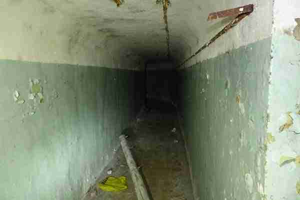 Είδαν δύο παράξενους σωλήνες να βγαίνουν από το έδαφος. Αλλά αυτό που κρύβονταν από κάτω..