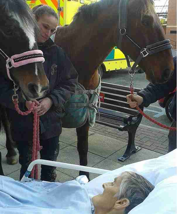 Λίγο πρίν πεθάνει ζήτησε να δει για τελευταία φορά το άλογο της. Δείτε τις φωτογραφίες..
