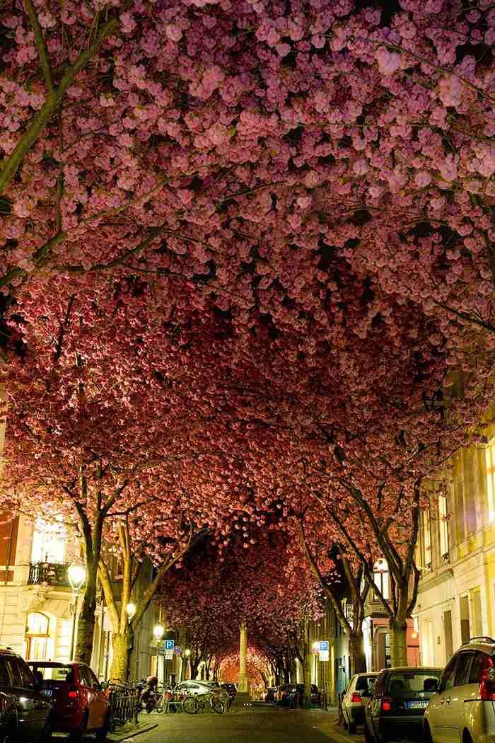 Βόννη, Γερμανία