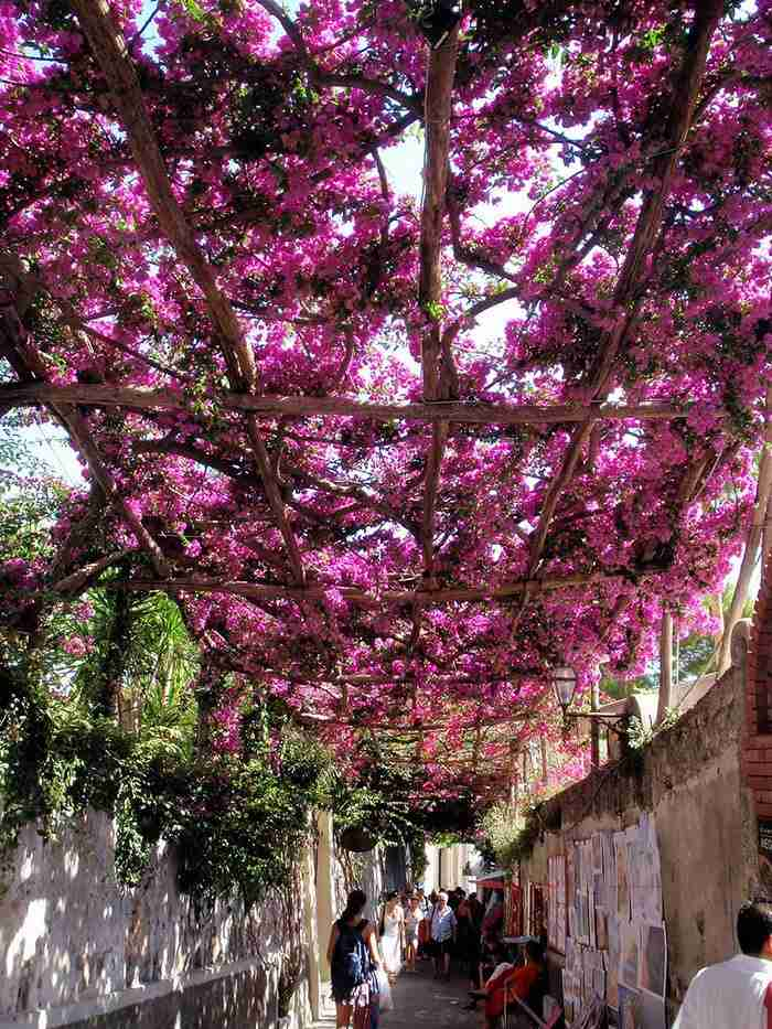 Ποζιτάνο, Ιταλία