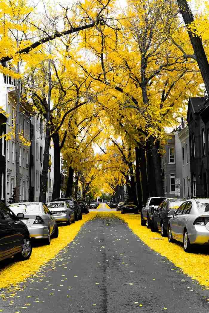 Ουάσιγκτον, ΗΠΑ