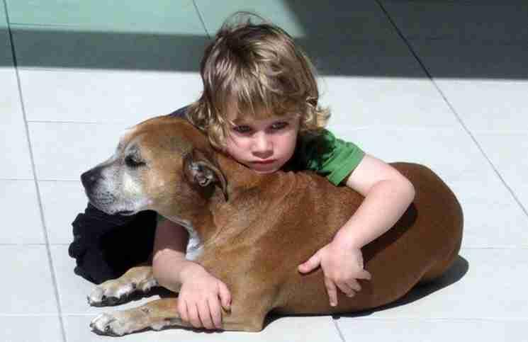 Είπαν σε ένα 6χρονο παιδί ότι ο σκύλος του θα πεθάνει. Διαβάστε τι τους απάντησε