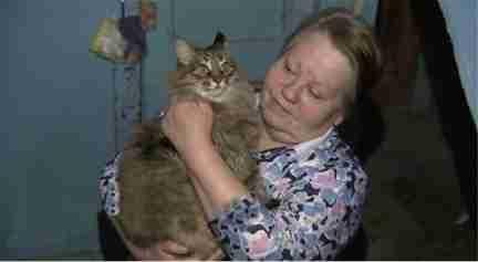 """Όλοι αποκαλούν αυτή τη γάτα """"ηρωική"""". Όταν διαβάσετε τι έκανε θα καταλάβετε γιατί."""